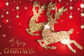Ningbo Baocheng Wish You All a Merry Christmas